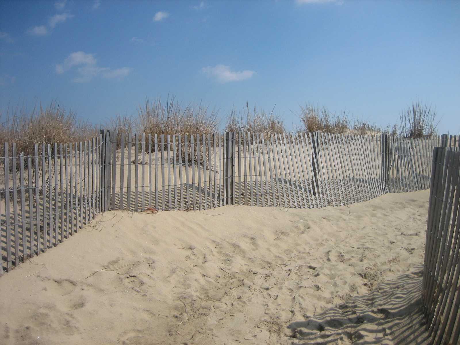 Dune crossng